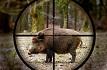 Forenspecial zum Thema Jagd - Pro und Contra